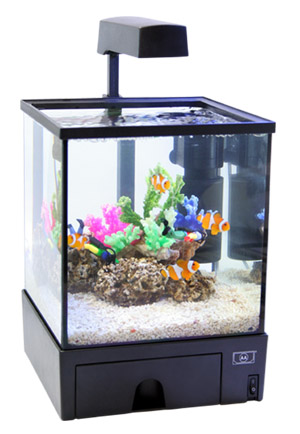 nano aquarium aquabox 5 5 liter mit beleuchtung innenfilter und mondlicht aqua lorenz. Black Bedroom Furniture Sets. Home Design Ideas